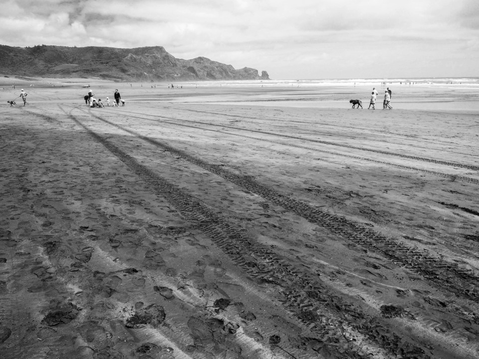 Bethells Beach - Black & White - Landscape Photography Auckland