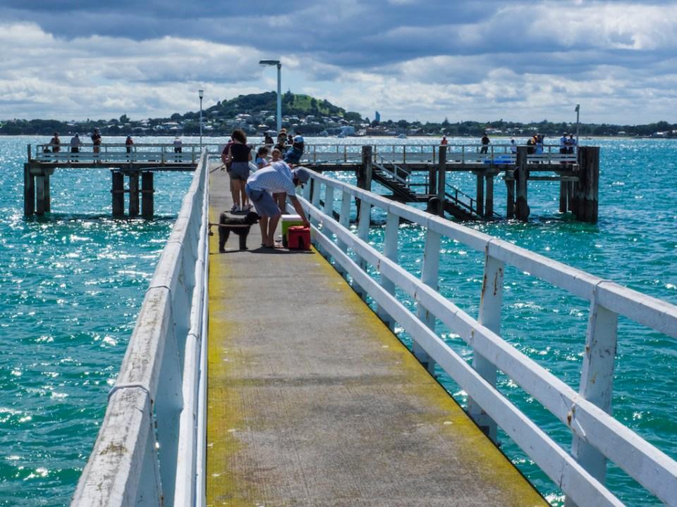 Okahu Bay Quay - Street Photography Auckland