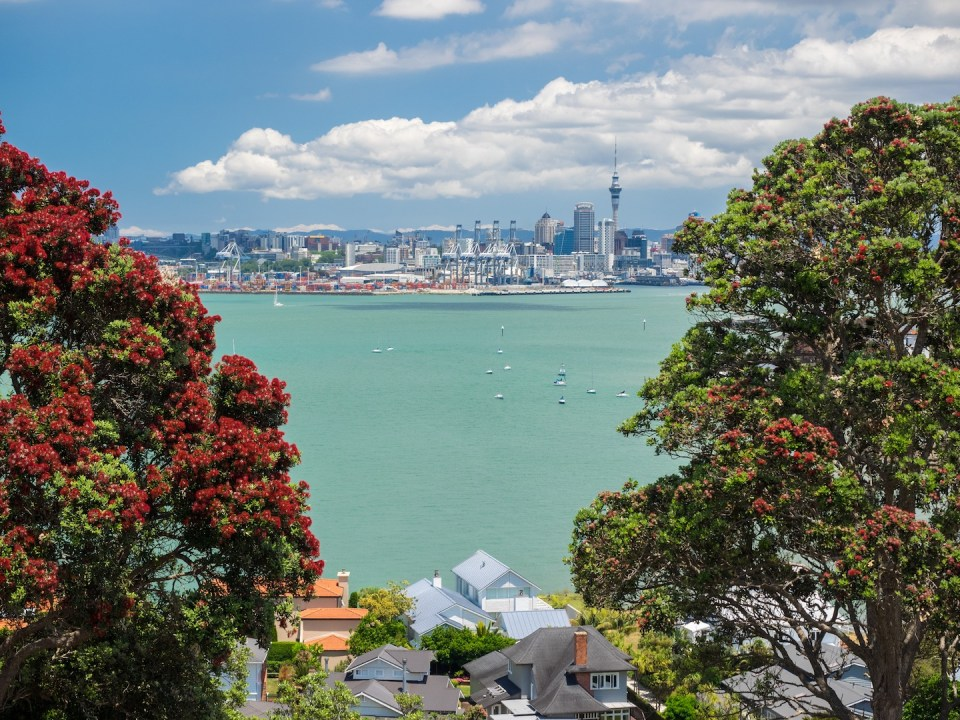 North Head View of Auckland Skyline