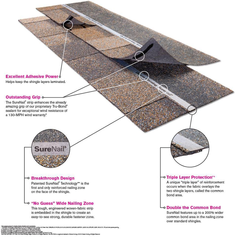 how shingles work infographic