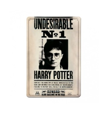 grande Plaque Metallique 3D harry potter