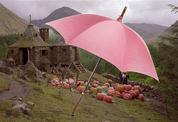 Parapluie de Rubeus Hagrid