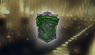 Fan de Serpentard ? Les goodies Harry Potter que tu vas adorer !
