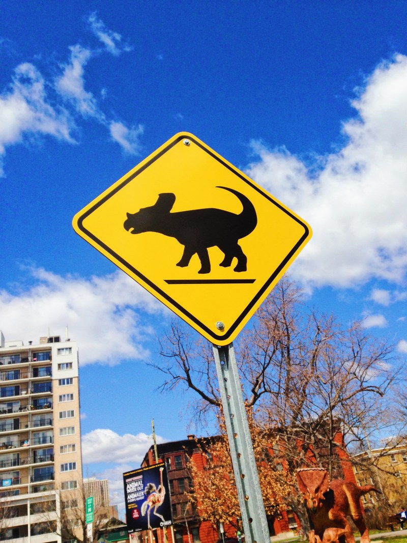 Dinosaur crossing at the Canadian Museum of Nature