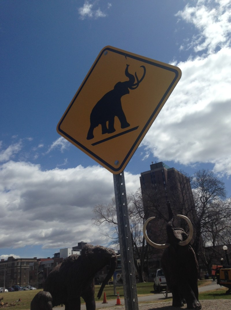 Mammoth crossing at the Canadian Nature Museum