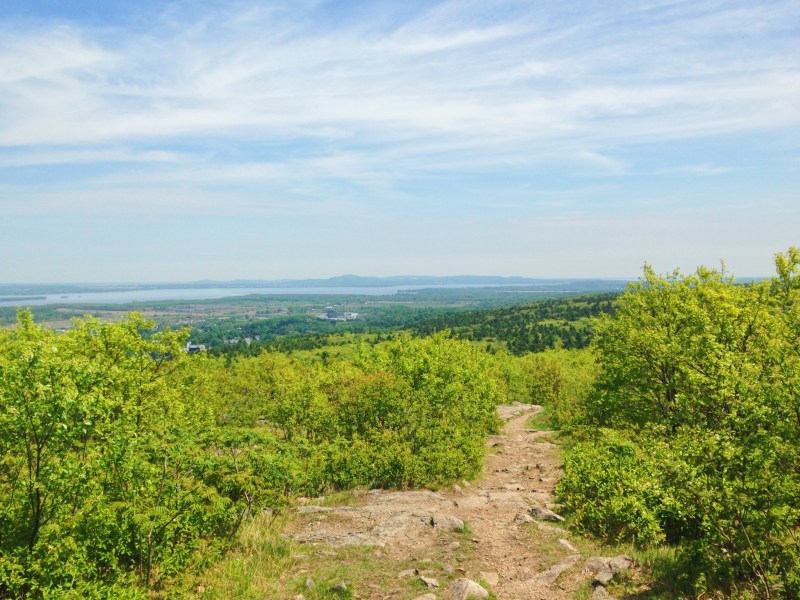 The view from Mount Rigaud