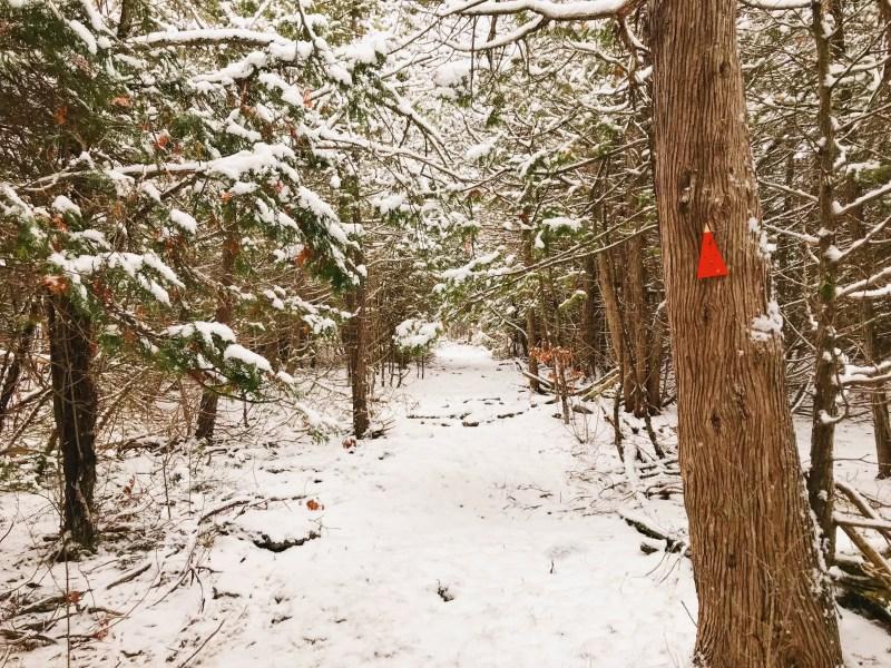 Rideau Trail
