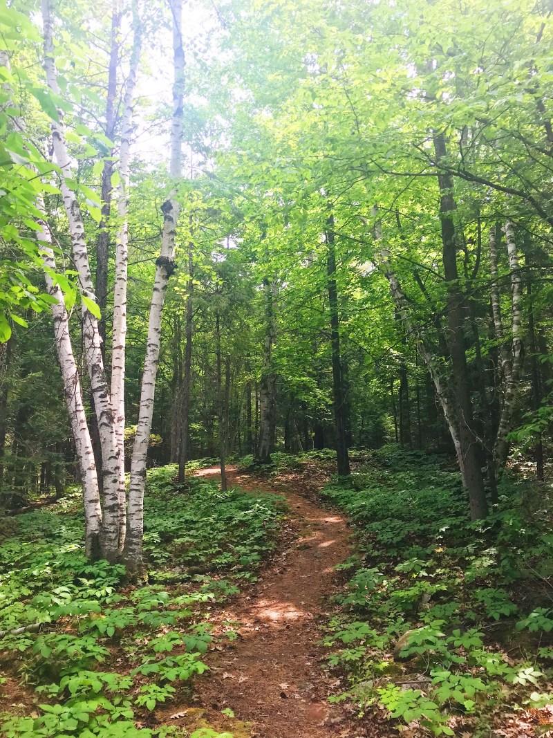 Chat Falls Trail