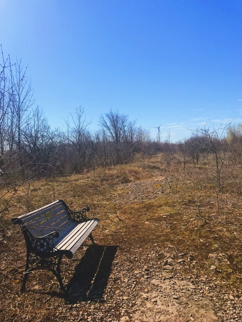 Reveler Conservation Area