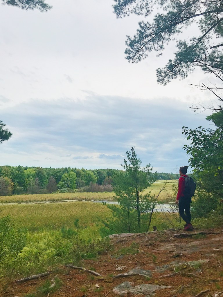 Randonnée au ruisseau Jones