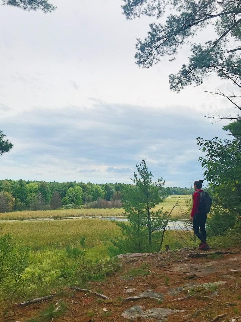 Overlooking Jones Creek