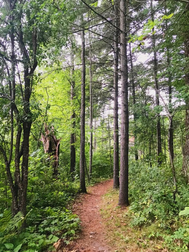 Sentier du Ruisseau Jones