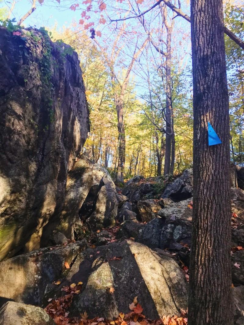 Sentier vers Leaning Rock