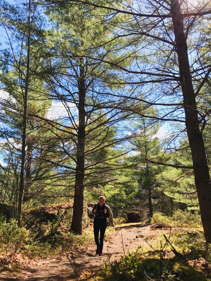 On the Carp Barrens Trail