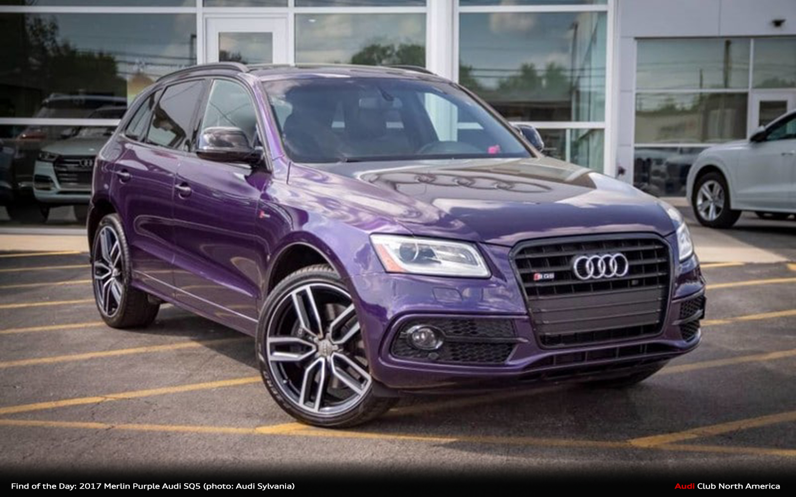 Find of the Day: 2017 Audi exclusive Merlin Purple SQ5