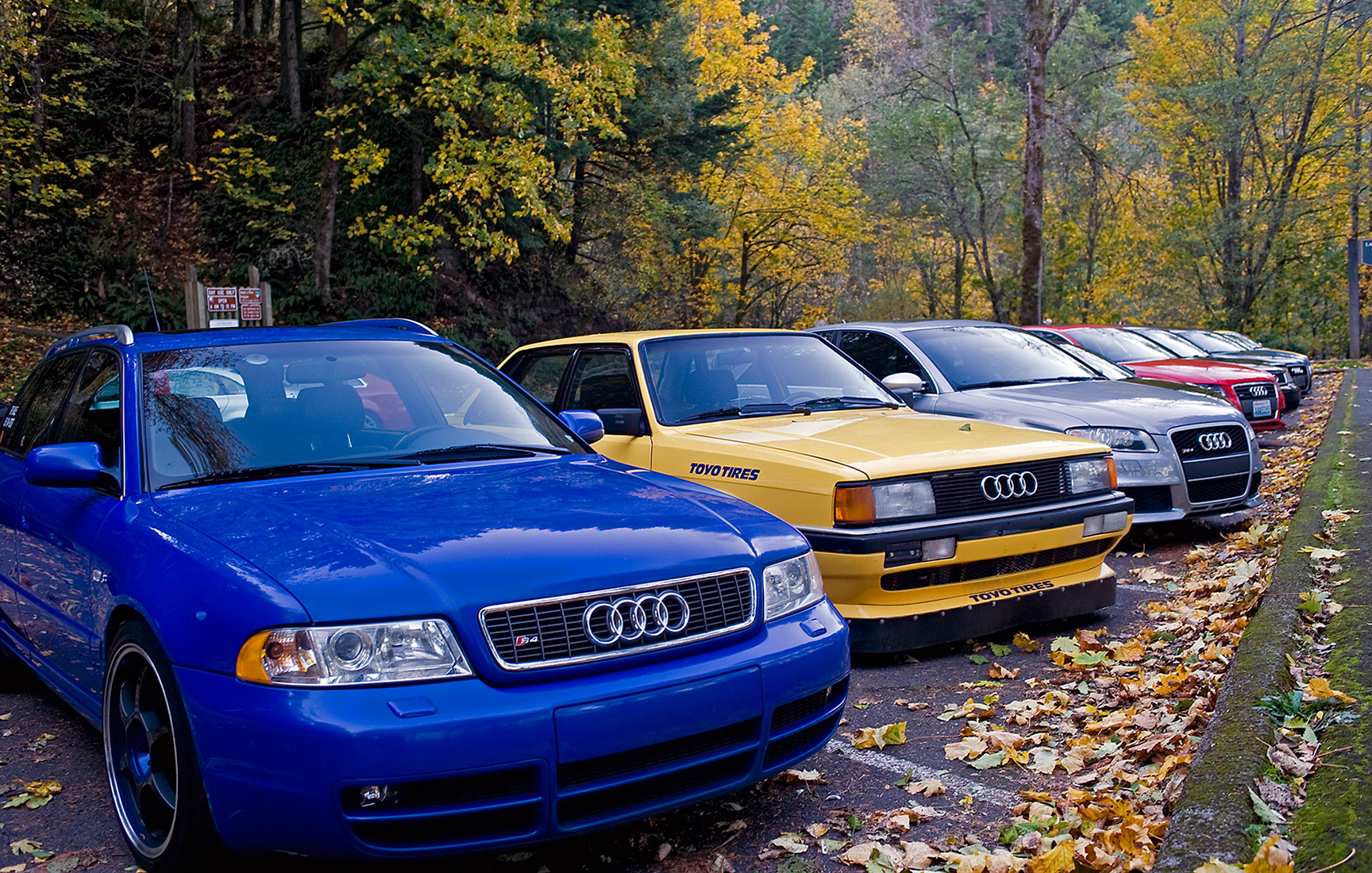 Home - Audi Club North America