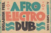 Biggabush – Afro Electro Dub