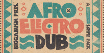 Sample Packs - Loopmasters Biggabush - Afro Electro Dub