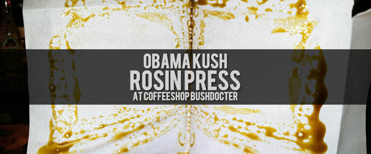 Ever dream of flying? Well now your dreams can become true, you can fly high with Obama Kush!