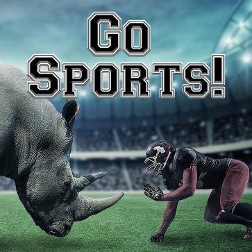 Go Sports!