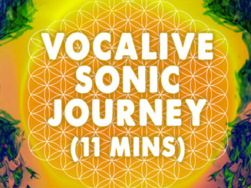 Vocalive - AudioSoul Healing Sonic Journey -  11 minute meditation - 60 BPM