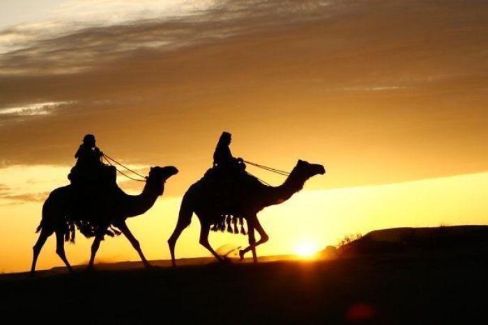 Arabia IMAX 3D (2011)