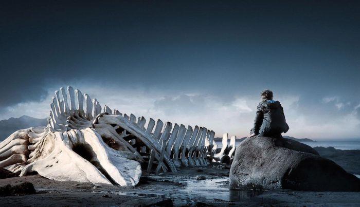 Leviatán (2014) AudioVideoHD.com