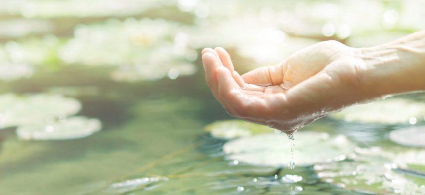 Taller:  Espiritualitat sostenible