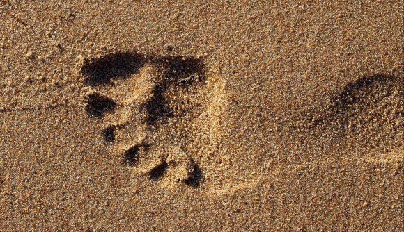 27 de novembre – Jornada: Harmonia entre la mort i la vida a les tradicions religioses