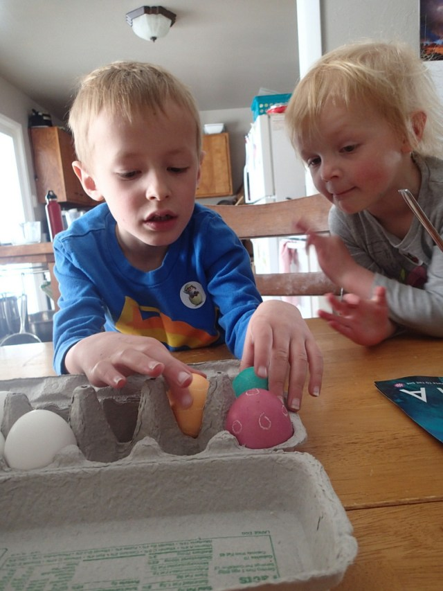 Kids checking our the eggs.