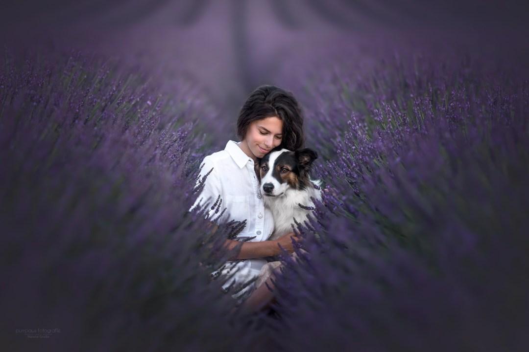 canine photographer france canine photography dogs artistic audrey bellot dog photographer auvergne animal portrait workshop training animals