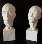 Plaster Cast Models