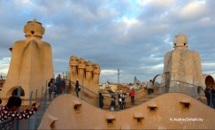 Rooftop of La Pedera
