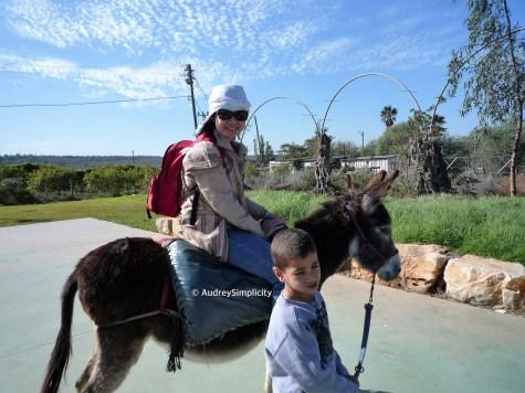 Kfar Kedem - Ancient Galilee
