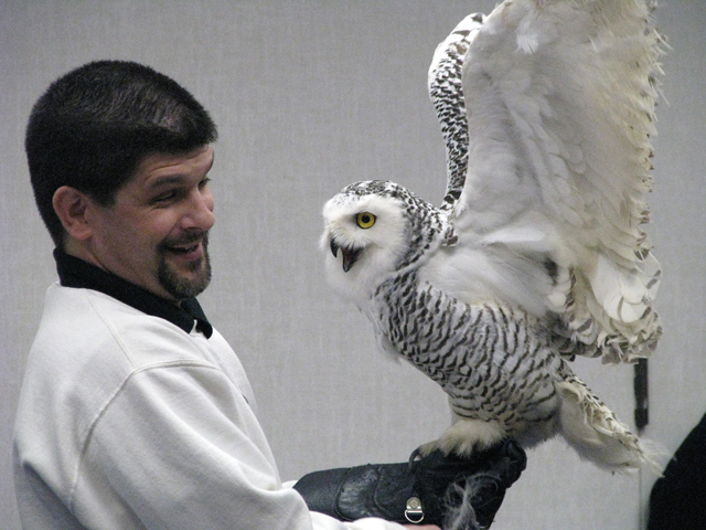 Audubon's Snowflake Sustainable Living Festival Saturday, February 4