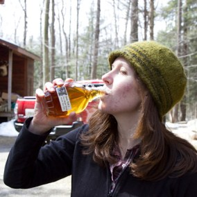 Maple - from Sap to Syrup