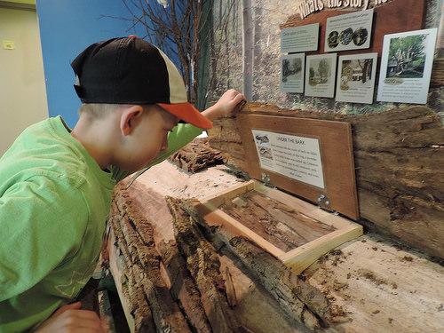 Visit Audubon for Doors Open Jamestown, Saturday, January  19, 2019