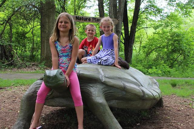 Time to Vote on Audubon Turtle's Name
