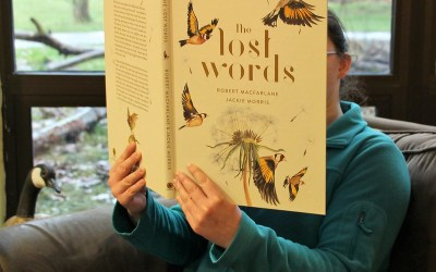 """""""The Lost Words"""" at Audubon  for Doors Open, Saturday, January 18"""