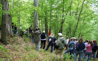 Allegany Nature Pilgrimage Goes Virtual This Weekend