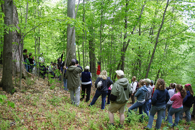 Allegany Nature Pilgrimage Goes Virtual This Weekend