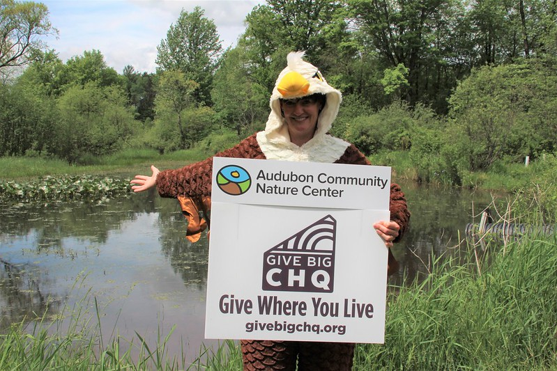 Remember Audubon During Give Big CHQ, June 1 to June 11