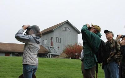 Early Morning Bird Walks at Audubon First Week in May