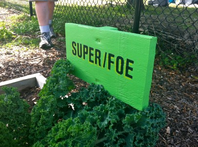 Super Foe garden plot.