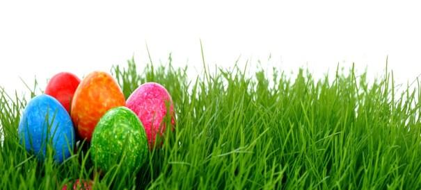 Die Auetaler WerbeManufaktur wünscht frohe Ostern!