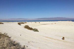 Salton Sea Beach White Sand
