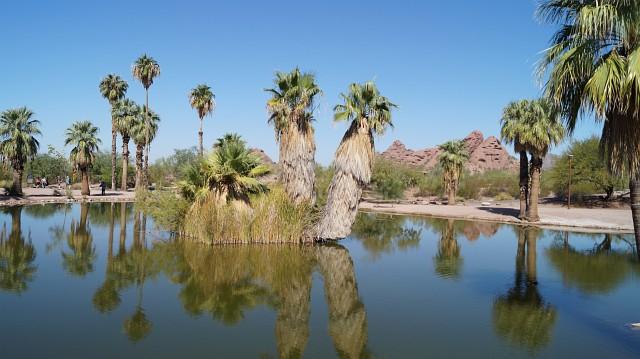Rote Berge im Papago Park Arizona