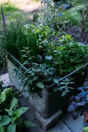 07-1Zero Waste Gardening-11