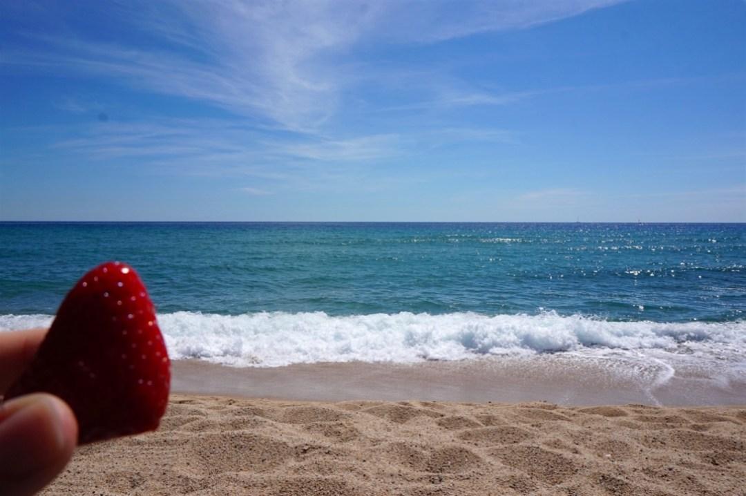 mer-et-fraise
