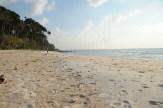 Beach No. 3